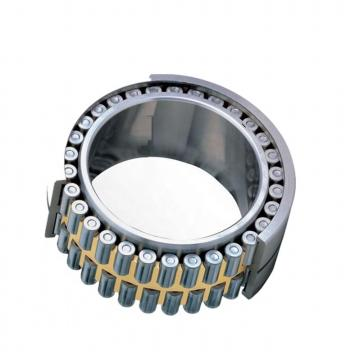 Copper Cage Bearing Product Cylindrical Roller Bearing with Brass Cage
